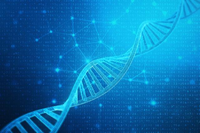 DNAイメージ
